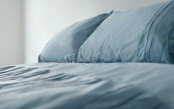Ren seng