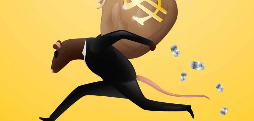 Rotter og økonomi