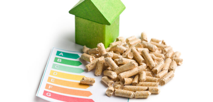 Træpiller og grøn energi