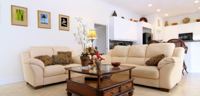 Hyggelig stue med sofaer